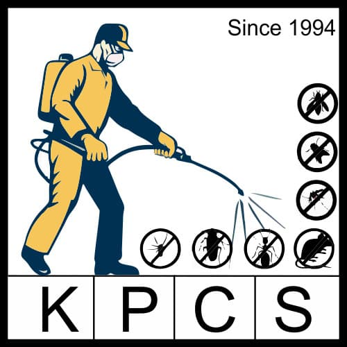 Karnal Pest Control Services