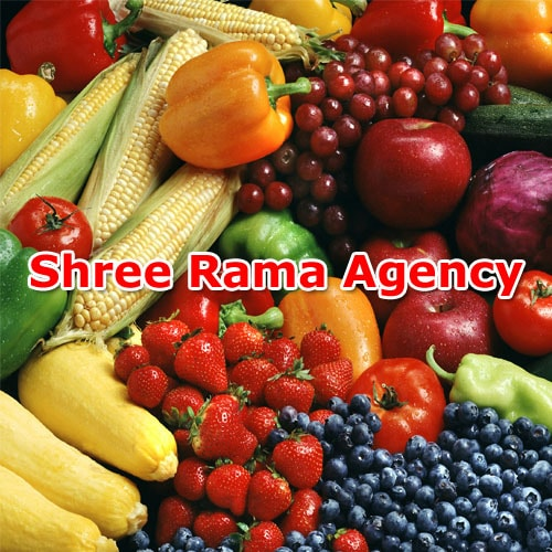 Shree Rama Agency